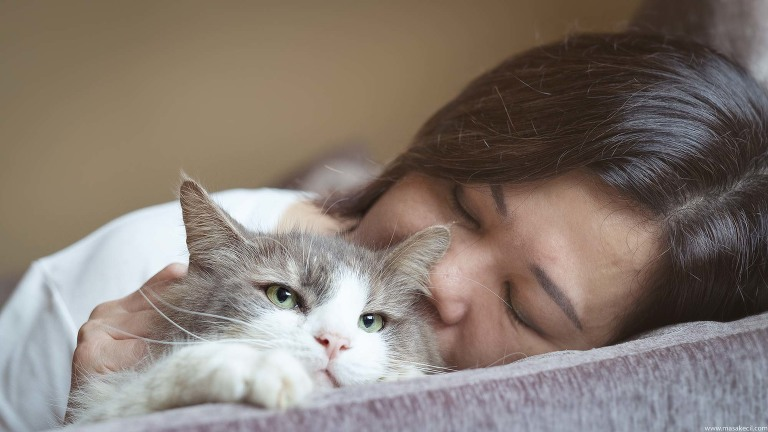 A cat and her loving owner.