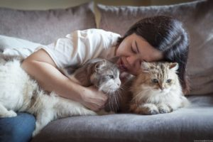 Two cats and her loving owner at home.